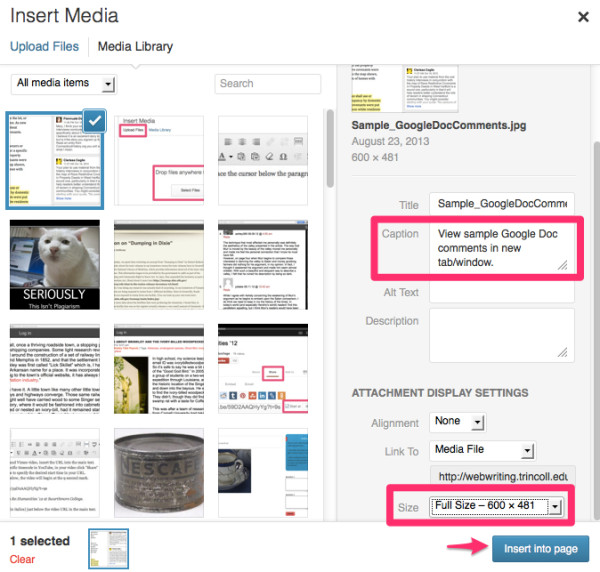 The attachment details and display settings for Insert Media in WordPress.